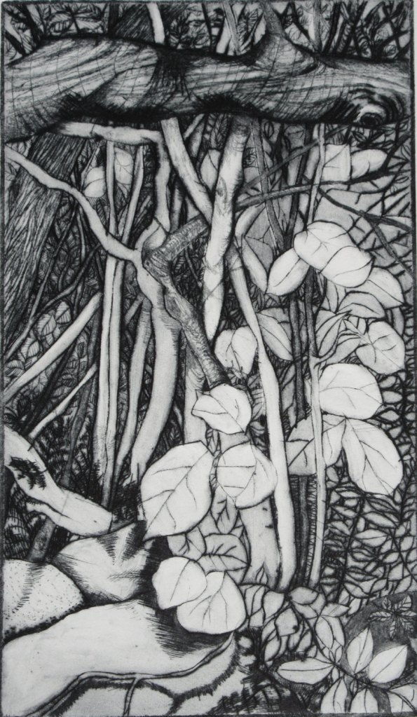 Undergrowth Dry Point Etching detailed grey Fine Art Print by Zinnia Gallery de ZinniaGallery