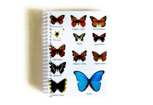 Butterflies Notebook, Writing Journal, Spiral Notebook, 4x6 Inches Notebook, Natural History, Back to School, Spiral Bound Journal, SALE de ciaffi