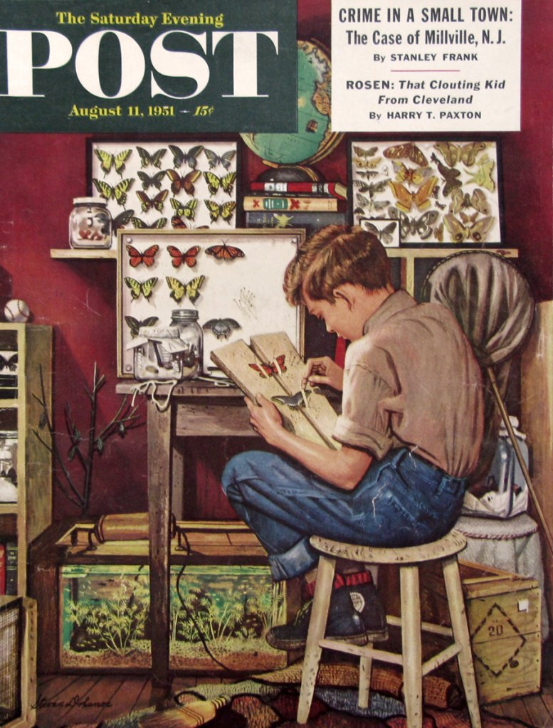 1951 Boy With Butterfly Collection - Lepidopterist - 1950s Saturday Evening Post Magazine Cover - Stevan Dohanos Art de RetroReveries