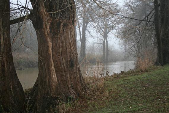 River, Medina River, Bandera, TX de ThePhotoImpression