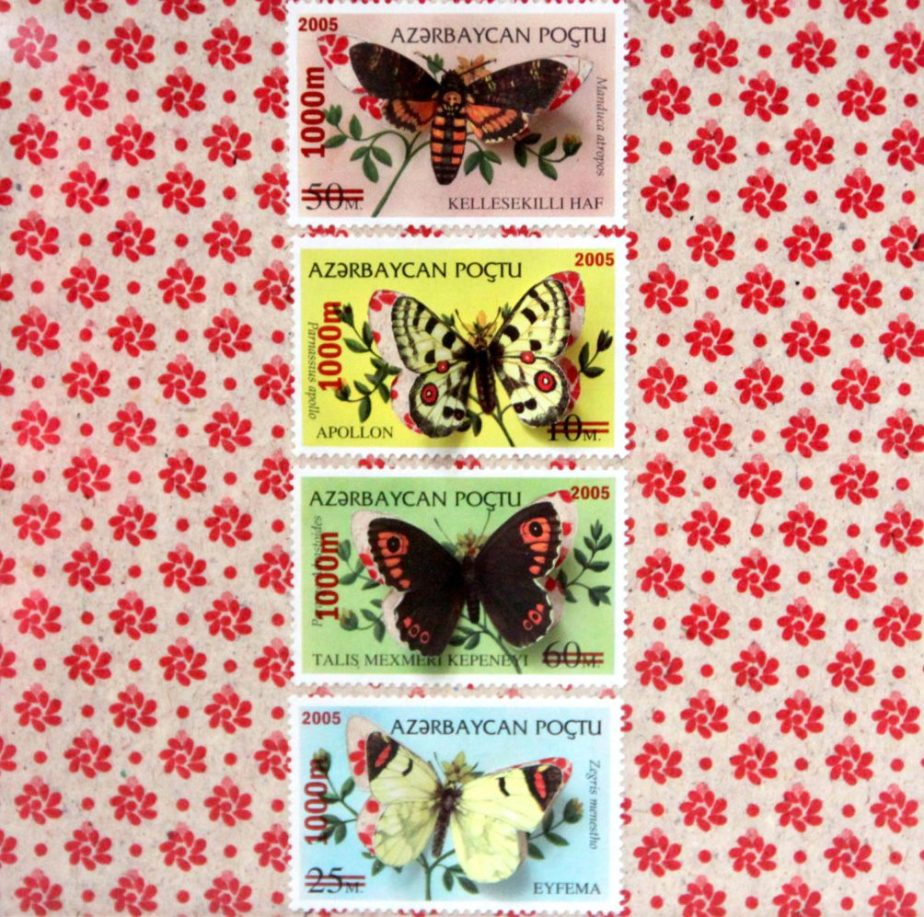 Butterfly illustrated stamps cut by hand in a box frame inspired by entomologists insects collections boxes | Monde minuscule #24 de HalLucilogene
