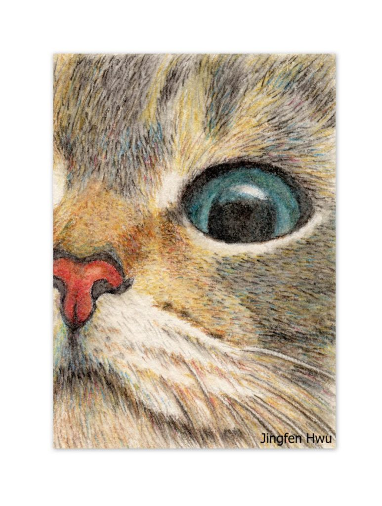 cat drawing art print - cat eye ginger tabby cat lover's gift unique card art for wall home kid's room dorm , desk decoration de JingfenHwu